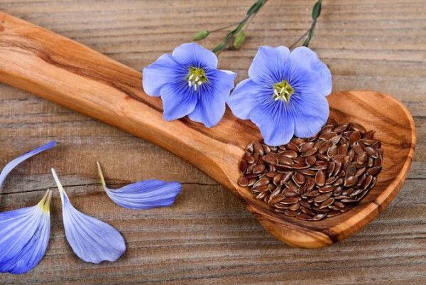 Семена льна в деревянной ложке