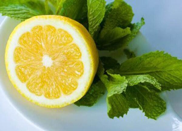 Мята и лимон